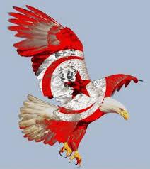 كووورة تونسية