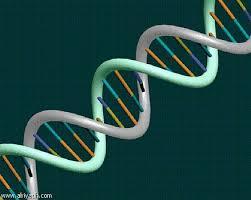 الجينات والكشف عن الأمراض الوراثية