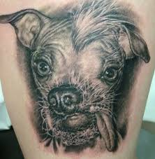 Animal Species Tattoo