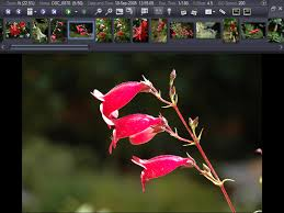 exifpro,image tools