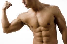 http://t3.gstatic.com/images?q=tbn:NeNX5els-QpzYM:http://sportsebooks.com/content_images/1/Bodybuilder.jpg