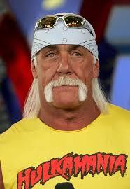 In This Photo: Hulk Hogan