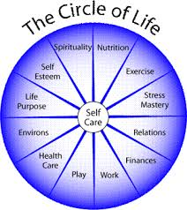 picture of circle of life
