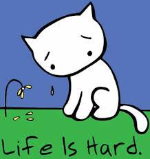 Feeling devastated thread Sad-cat1