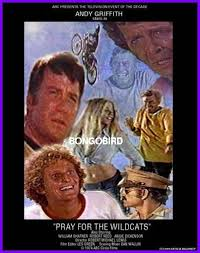 Pray for the Wildcats (1974) (TV)