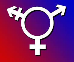 chp genders La teoria  del gender  e la persecuzione  contro  la famiglia  naturale