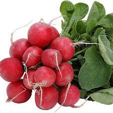 الخضروات Radish_608_v1.jpg