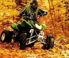 2007 Arctic Cat DVX 400 ATV