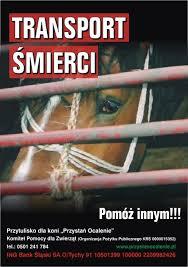 konie-rzeź