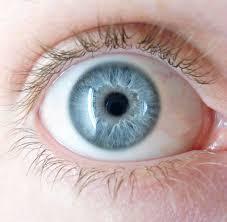 Pourquoi les parents aux yeux bleus ont des enfants aux yeux bleus Blueye