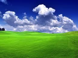 green_grass_blue_sky_bliss.jpg