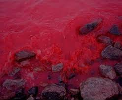 blood-river.bmp