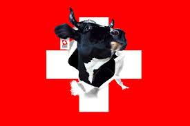 fond-ecran-drapeau-suisse dans zOne Le sAc de Marianne