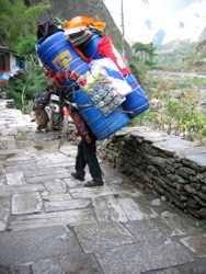 Sherpas are Himalayan porters