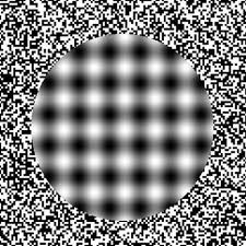 New Optical Illusion