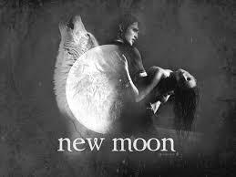 New-Moon-Wallpaper-twilight-series-3125665-1024-768