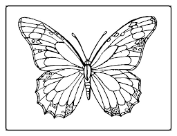 Just colour in this butterfly