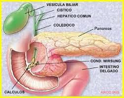 pancreatitis how