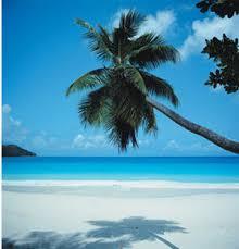 http://t3.gstatic.com/images?q=tbn:lDnL0wzcIAhyPM:http://toietmoietc.com/blog/wp-content/uploads/2008/04/faire-un-voyage-dans-le-sud-ete.jpg