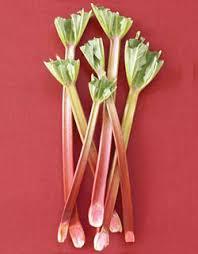 Rhubarb หรือ โกฏน้ำเต้า