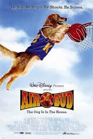 Les vidéofilms Air_bud