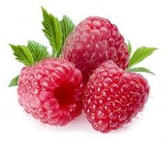 http://t3.gstatic.com/images?q=tbn:qp1_44oja-I1vM:http://aromati.net/wp-content/uploads/2009/07/746raspberries-300x254.jpg