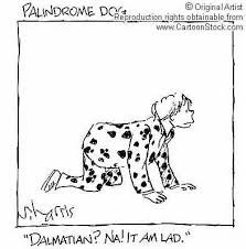 Favorites - Palindrome Dog