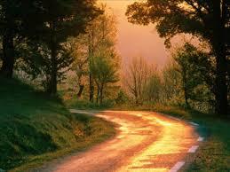 عکس جاده در غروب