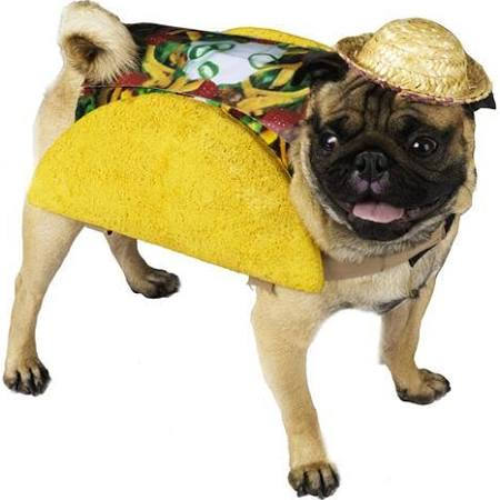 Funworld Taco Pet Food Dog Costume Taco
