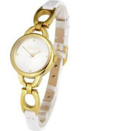 Coach Quartz Silver Dial Leather Watch