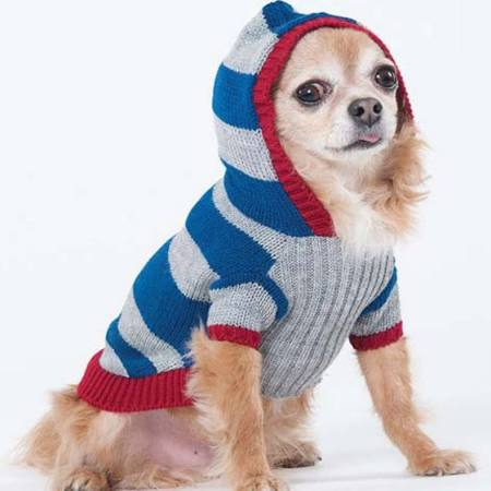 Fashion Pet Collegiate Striped Dog Sweater