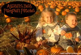 Free Pumpkin Patch Houston Tx by Best Pumpkin Patches In Austin 2012 R We There Yet Mom