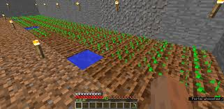 Minecraft Grow Pumpkins Fast by Crops Won U0027t Grow Or Hydrate Survival Mode Minecraft Java