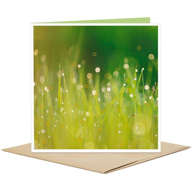 Blades of Grass Blank Card