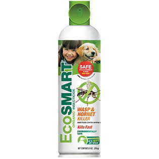 Ecosmart Wasp & Hornet Killer - 266ml