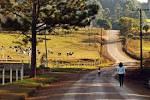 imagem de Westfália Rio Grande do Sul n-10