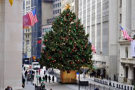 Christmas Tree Amazon Prime by O Christmas Tree Where To See The Biggest Evergreens Around Nyc