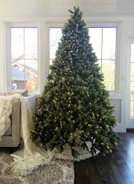 7ft Black Pencil Christmas Tree by King Of Christmas Highest Quality Artificial Christmas Trees