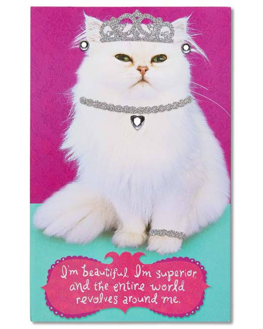 American Greetings Inner Cat Birthday Card with Rhinestones