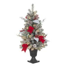 Kinds Of Christmas Trees by Find All Types Of Christmas Trees At The Home Depot
