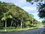 imagem de Ipatinga Minas Gerais n-22