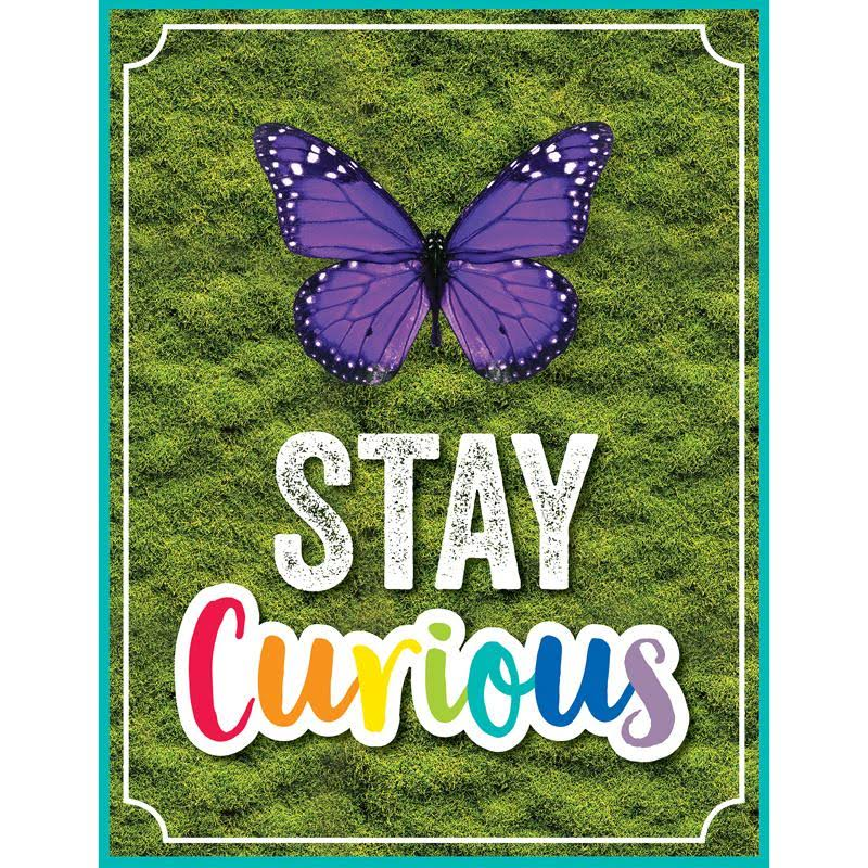 Carson Dellosa Woodland Whimsy Stay Curious Chart 114274