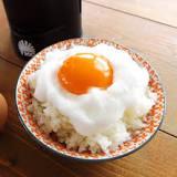 タカラトミー, 食事, タカラトミーアーツ, 日本