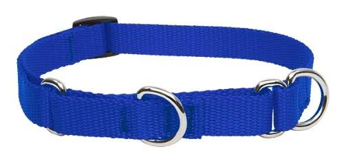 "Lupine Pet Basics Martingale Collar for Medium and Larger Dogs - Blue, 14-20"" x 3/4"""