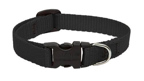 "Lupine 1/2"" Black 8""-12"" Adjustable Collar"