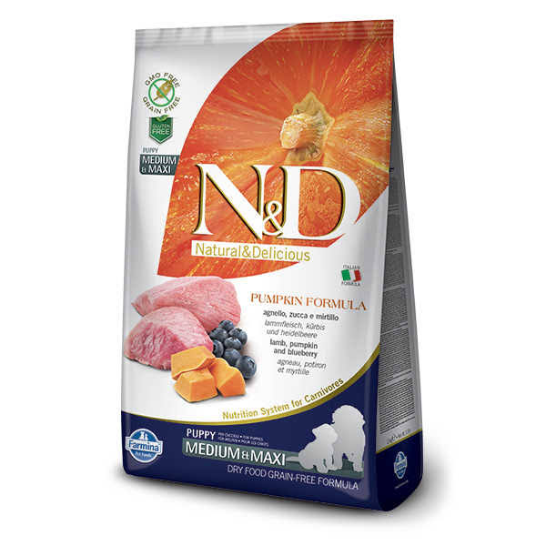 N&D Grain Free Dog Food - Pumpkin & Blueberry
