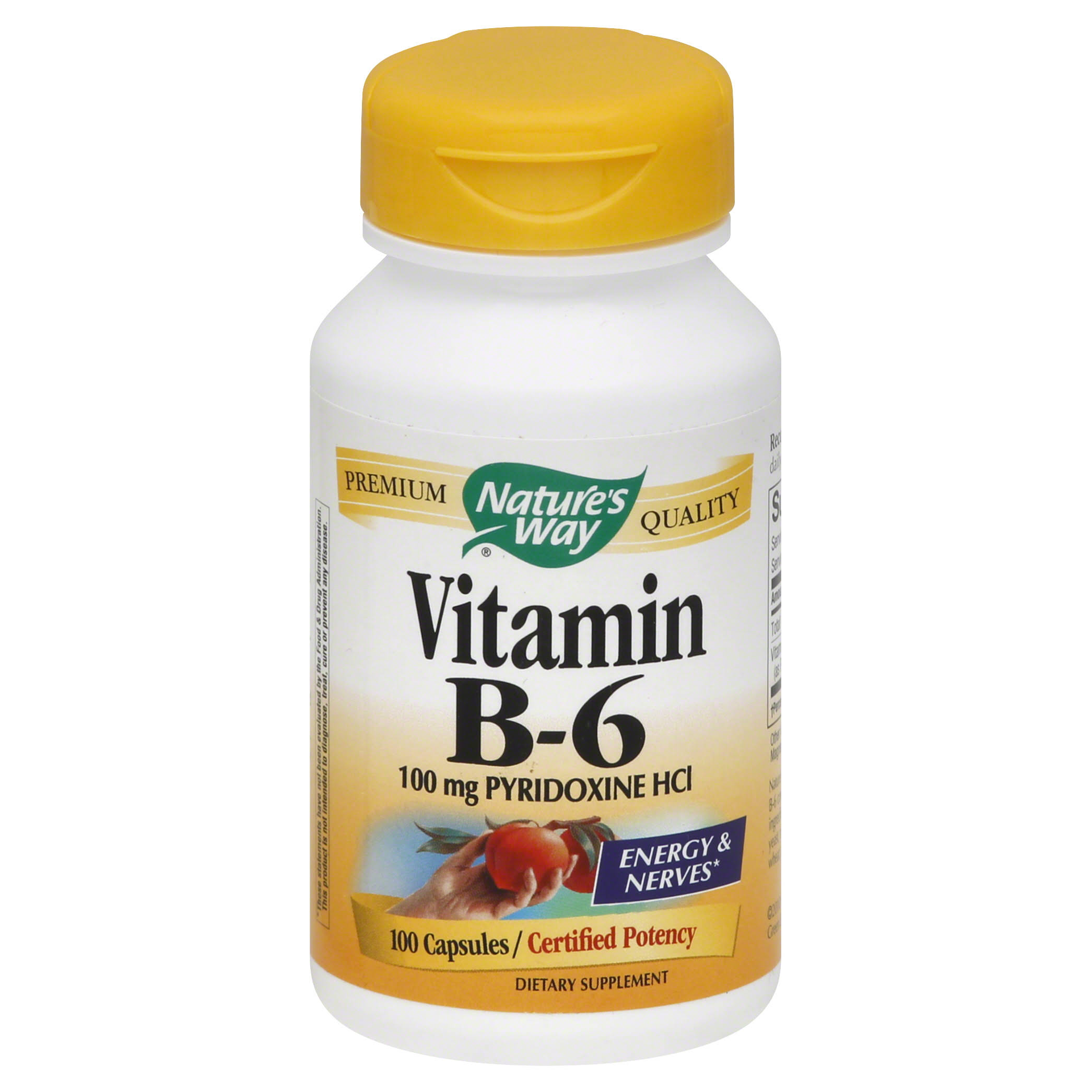 Nature's Way Vitamin B-6 - 100mg, x100