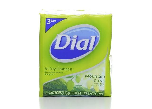 Dial Antibacterial Deodorant Soap - Mountain Fresh, 3 Bars