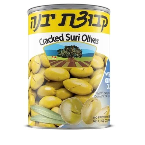 Kvuzat Yavne - Cracked Suri Olives