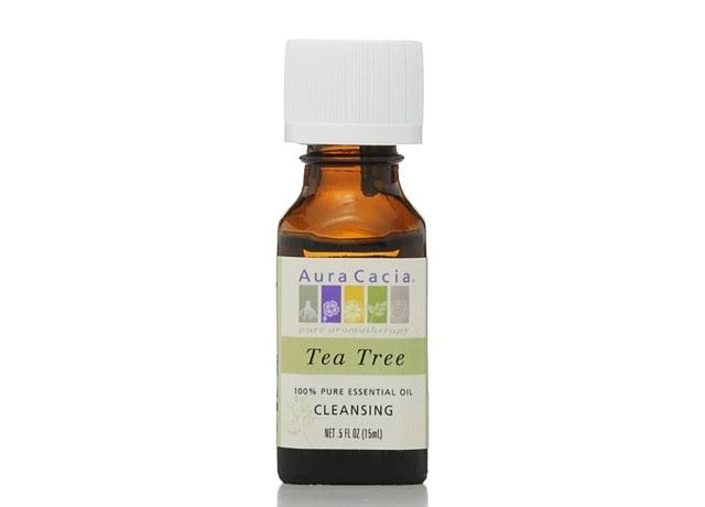 Aura Cacia Cleansing Essential Oil - Tea Tree